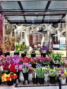 Flowers @ Bi-Rite Market.